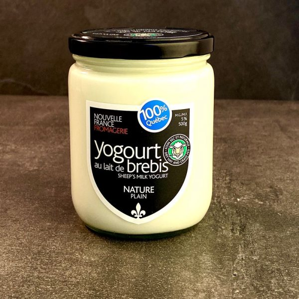 Sheep Yogurt Maple